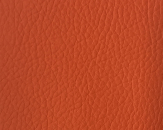 Cotton Leather 10